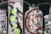 Random Forces 14 Stacey Steers Artwork Beakers Red and Green, Stacey Steers